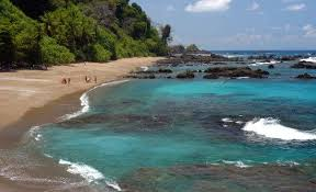 Clearest Water In The Us 10 Best Costa Rica Diving U0026 Snorkeling Spots Costa Rica Experts