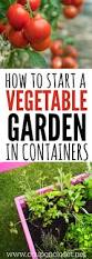 container gardening how to start a vegetable garden