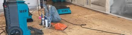 how to cut through subfloor 8 effective steps for repairing a water damaged subfloor