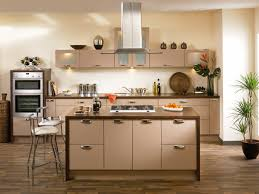 cheap kitchen cabinet doors only gorgeous cheap kitchen cabinet doors only kylemont replacement