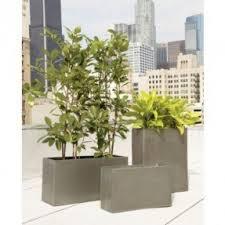 Tall Galvanized Planter by Rectangular Indoor Planter Foter