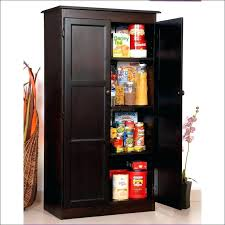 Wooden Storage Closet With Doors Office Storage Cabinet Shallow Storage Cabinet Size Of