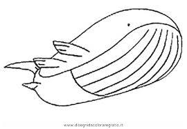 pokemon coloring pages wailord pokemon wailord coloring page sketch coloring page