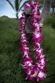 hawaiian leis oahu greeting at the hawaii honolulu airport