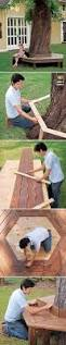 Tree Bench Ideas 150 Remarkable Projects And Ideas To Improve Your Home U0027s Curb