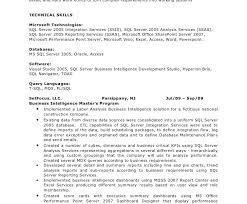 T Sql Resume Attractive Ideas Bi Developer Resume 13 Business Intelligence