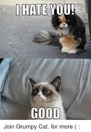 Good Grumpy Cat Meme - i hate you good join grumpy cat for more grumpy cat meme on me me