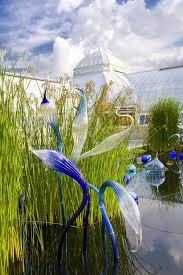 Botanical Garden In Bronx Dale Chihuly Reprises His New York Botanical Garden Show I Artnet News