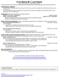 Resume Sample Format Pdf Philippines by Submitting A Resume Online Free Resume Example And Writing Download