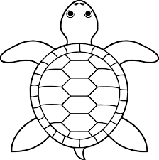 tortoise turtle top view coloring pages wecoloringpage