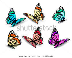 butterfly free vector 1 994 free vector for commercial