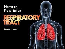 powerpoint design lungs respiratory care presentation template for powerpoint and keynote