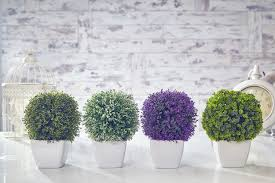 artificial topiary tree flowers buxus boxwood plants in pot