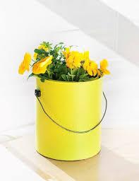 Challenge Flower Pot 46 Best Paint Cans Images On Flower Vases Paint