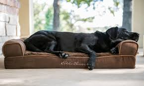 eddie bauer large couch dog bed groupon goods