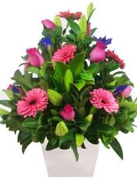 Cheapest Flower Delivery Same Day Flower Delivery Melbourne Www Dailyflowerdeals Com Au