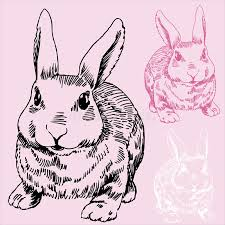 bunny rabbit sketch stock vector image of vector easter 9264846