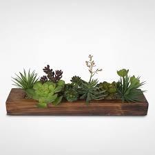 Indoor Plant Arrangements Best 10 Succulent Containers Ideas Ideas On Pinterest Indoor