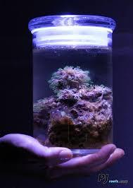 best 25 saltwater aquarium supplies ideas on