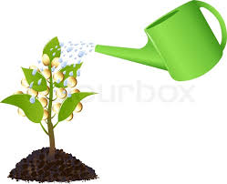 money tree with golden coins watering can and water drops
