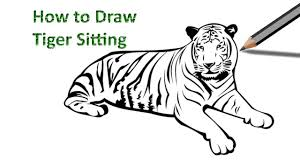 how to draw a tiger sitting easy drawing by