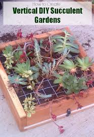 200 best garden plants flowers images on pinterest outdoor