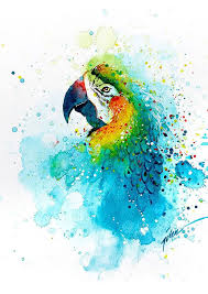 best 25 watercolor animals ideas on pinterest watercolor