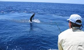 fishing guides port aransas texas charter fleet u2013 port aransas fishing charters u0026 guides 361