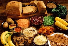 high fiber diet may check onset of diabetes criticbrain