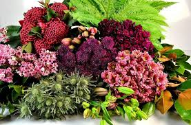 whole sale flowers wholesale flowers perth tesselaar flowers