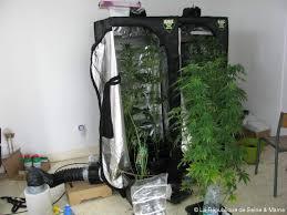 chambre de culture cannabis complete placard cannabis complet beautiful chambre de culture cannabis