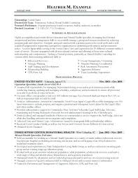 different resume templates types of resume formats
