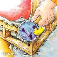 Getting Rid Of Mold In Basement by Mold And Mildew Removal The Family Handyman