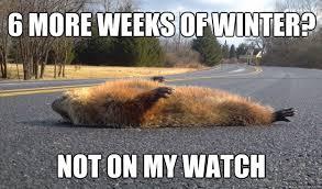 Groundhog Meme - 6 more weeks of winter not on my watch groundhog comedy banner