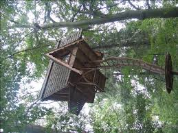 7 best extreme tree houses images on pinterest architecture