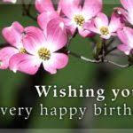 birthday e cards free free birthday e cards 100 images birthday email cards free