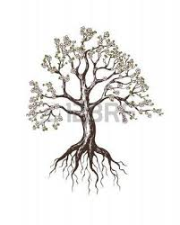 oak tree tree roots branches tree designs