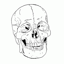 free printable skull coloring pages for kids coloring home