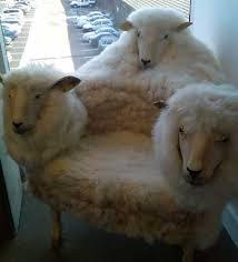 Sheep Home Decor 7 Home Decor Items You Can Buy Networx