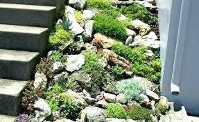 Rock Gardening River Rock Garden Filterstock