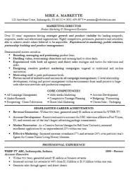 Cvs Resume Example by Cv Examples Free Examples Of Cvs For Different Professions