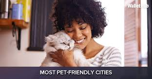 2017 u0027s most pet friendly cities wallethub
