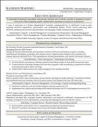 Ceo Assistant Resume Senior Executive Resume Senior Executive Resume Sample Senior