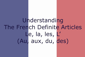 french definite article learn french