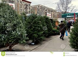 nyc sidewalk christmas tree stand editorial photo image 48078341