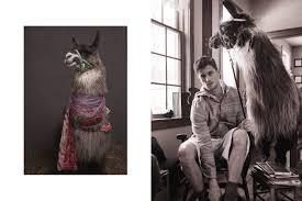 llamas and pajamas fashion news photos and vogue