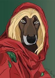 afghan hound in apartment it u0027s my cake day 2 days have some oc of mine album on imgur