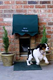 Patio Pet Door Company by Dog Door Canopy Adorable Petaholic Pinterest Doors