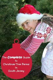 the complete guide to christmas tree farms in south jersey