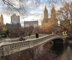 New York Travel Blogs images Autumn in new york city bucket list vivacious views travel blog png